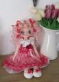 APOLENKA v červeno - bílé s růžičkami